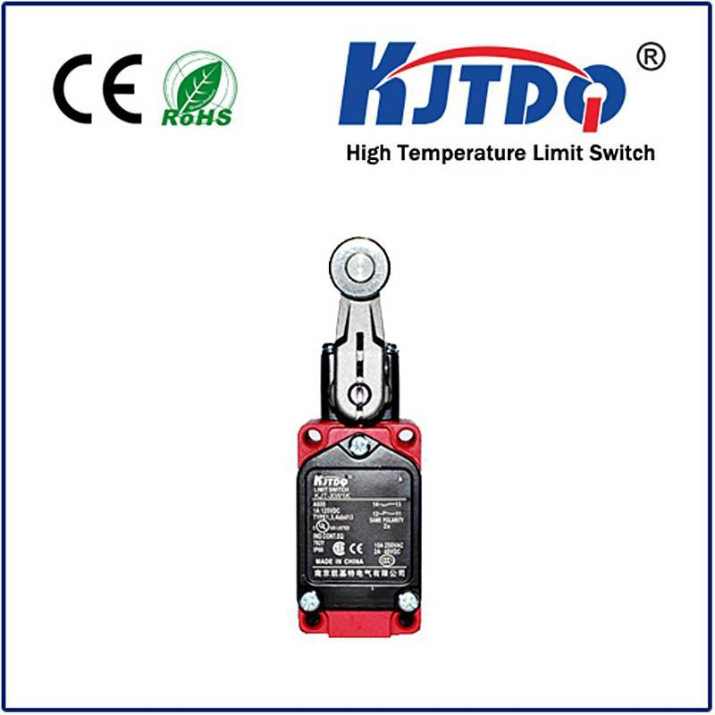 High temperature limit switch XWKA