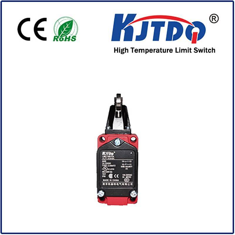 High temperature limit switch XWKD