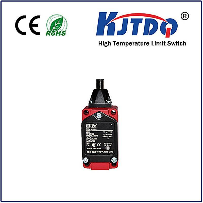 High temperature limit switch XWKE