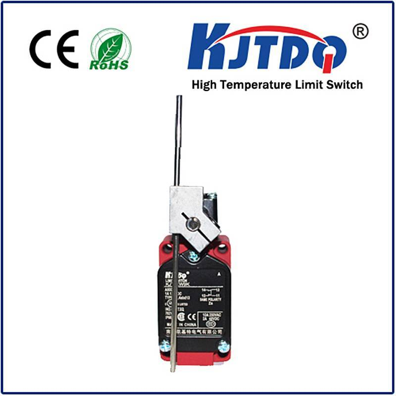 High temperature limit switch XWKI